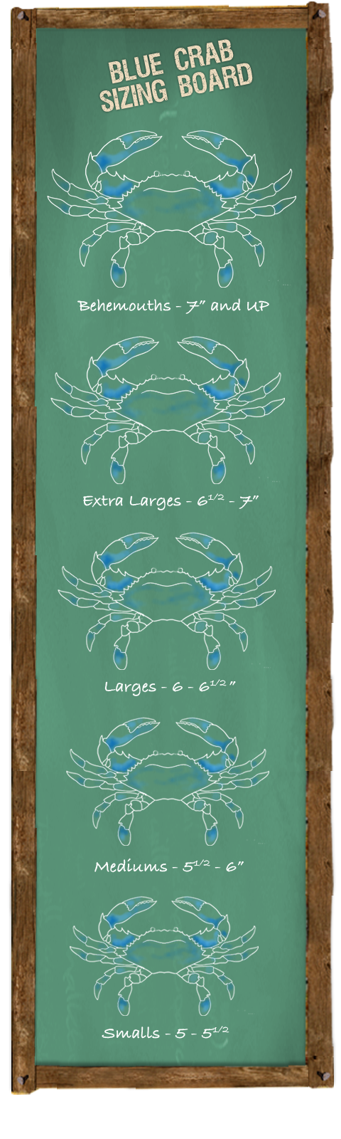Blue Crab Sizing Board